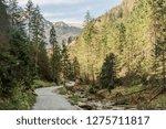 trail in tatra in poland... | Shutterstock . vector #1275711817