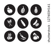 9 vector icon set   eggplant ... | Shutterstock .eps vector #1276034161