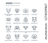 16 linear dogs icons such as... | Shutterstock .eps vector #1276039867