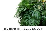 monstera and tropical leaves... | Shutterstock . vector #1276137004