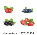 berries set. vector illustration | Shutterstock .eps vector #1276182454