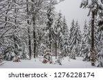 fairy tale winter in the... | Shutterstock . vector #1276228174