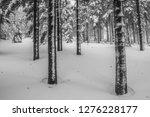 fairy tale winter in the... | Shutterstock . vector #1276228177