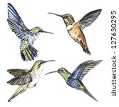 Stock photo watercolor set hummingbirds 127630295
