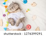 Stock photo cute cat in a white t shirt with children s toys sweet kitten banner for design top view 1276399291