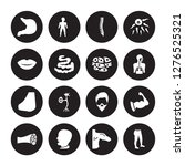16 vector icon set   stomach ... | Shutterstock .eps vector #1276525321