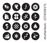 16 vector icon set   ylang... | Shutterstock .eps vector #1276534171
