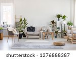 Small photo of Urban jungle in bright living room interior with white couch with knot pillow and wooden furniture, copy space on empty wall