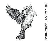 vector flying pigeon. white... | Shutterstock .eps vector #1276955281