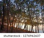 love at sundown    Shutterstock . vector #1276962637