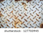 Close up of rusty iron sheet, using for background - stock photo