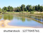bamboo bridge across the river... | Shutterstock . vector #1277045761