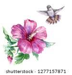 watercolor painting.  hand... | Shutterstock . vector #1277157871