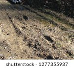 Stock photo tracks of the animal bigfoot pressed into soft brown earth we believe these are its tracks as they 1277355937