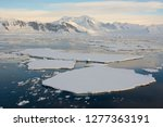 Small photo of Antarctica, near Adelaide Island. The Gullet. Ice floes and brash ice.