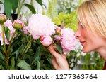 woman smelling flowers in... | Shutterstock . vector #1277363764
