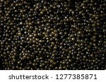 black caviar background. high... | Shutterstock . vector #1277385871