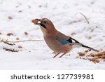 jay | Shutterstock . vector #127739981