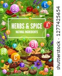vitamins in spices  herbs ... | Shutterstock .eps vector #1277425654