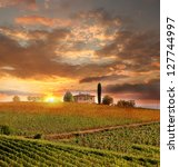 Chianti Vineyard Landscape In...