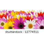 colorful floral border made... | Shutterstock . vector #12774511