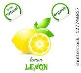 vector illustration of fresh... | Shutterstock .eps vector #127746827