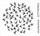 set of black hand drawn strokes ... | Shutterstock .eps vector #1277529091