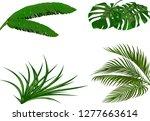 set. green leaves of banana ... | Shutterstock .eps vector #1277663614