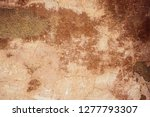 cracked and peeling paint old... | Shutterstock . vector #1277793307