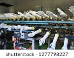 rubber gloves production line    Shutterstock . vector #1277798227