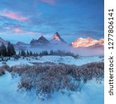 Winter Morning Mount Assiniboine Also - Fine Art prints