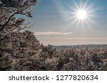 frost and ice crystal covered... | Shutterstock . vector #1277820634
