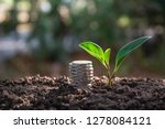 saving money concept with money ... | Shutterstock . vector #1278084121