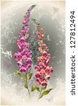 greeting card with a foxglove... | Shutterstock .eps vector #127812494