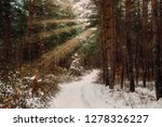 road in winter forest and... | Shutterstock . vector #1278326227