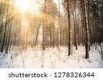 dreamy landscape with winter... | Shutterstock . vector #1278326344