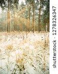 dreamy landscape with winter... | Shutterstock . vector #1278326347