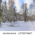sunny winter day in the forest... | Shutterstock . vector #1278376867