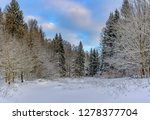 sunny winter day in the forest... | Shutterstock . vector #1278377704