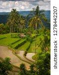 balinese mountain rice field.... | Shutterstock . vector #1278442207