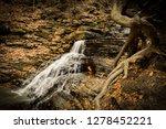 eternal flame waterfall   Shutterstock . vector #1278452221