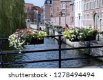 pots with flowers in bloom on a ... | Shutterstock . vector #1278494494