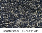 the parched soil   Shutterstock . vector #1278544984