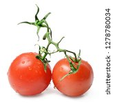 Two Tomatoes On A Branch On An...