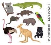 set of australian animals and... | Shutterstock .eps vector #1278804247