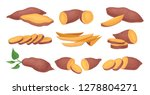 flat vector set of whole and... | Shutterstock .eps vector #1278804271