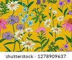 seamless summer pattern. wild... | Shutterstock .eps vector #1278909637