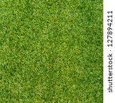 green grass surface | Shutterstock . vector #127894211