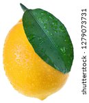 the full lemon close up with...   Shutterstock . vector #1279073731