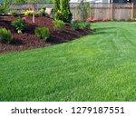 new edit of closeup capture of...   Shutterstock . vector #1279187551